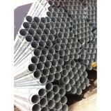 """ASTM A53 1/2 """" - 8 """" heißes eingetauchtes galvanisiertes Stahlstahlrohr des rohr-ERW"""