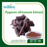 Extracto médico de Africanum de la corteza de Pygeum de la salud con garantía de calidad