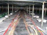 Piso de acceso elevado Panel de PVC de sulfato de calcio