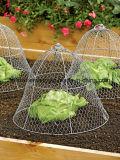 Kippegaas die/Hexagonale van de Draad met Laag Koolstofstaal opleveren opleveren