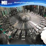 Planta de relleno del agua carbónica de la bebida de la fábrica de China