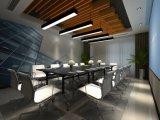 Luz de tira de alumínio antiofuscante da extrusão do diodo emissor de luz do perfil para o escritório (LT-50100)