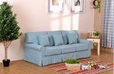Mobília moderna com o sofá da tela para o sofá da sala de visitas