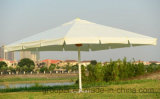 Grand parapluie superbe de Pasarol, parapluie de balcon, occasions extérieures de loisirs