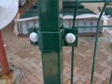 Ячеистая сеть PVC Coated стальная ограждая с 20 летами фабрики опыта (XMM-WM6)