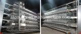 농업 장비 가금 농기구 판매를 위한 중국 새장