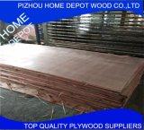 Okoume / Bintangor / Poplar / Birch Contraplacado comercial / Folha de madeira compensada marinha