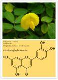 Luteolin, Erdnuss-Shell-Auszug, Chrysantheme-Auszug