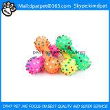 Haltbares Gummihundekauen-Haustier-Spielzeug-Höhlung-Trainings-Spielzeug
