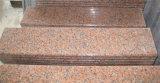 Lastra rossa del granito di Grantie dell'acero Polished della lastra