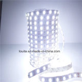 Tira morna do diodo emissor de luz do branco SMD 5050 60LEDs/M