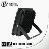 100W SMD LED 좋은 열 분산 IP65 까만 LED 플러드 빛