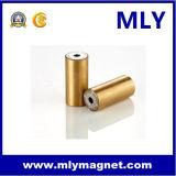 방사선 영원한 NdFeB 자석 네오디뮴 철 붕소 (MLY084)