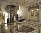 개인적인 별장 가정 임명을%s 별장 엘리베이터 중국제