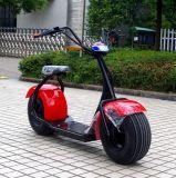 Motorino elettrico di Citycoco della gomma grassa di stile di vita della fabbrica 1000W (JY-ES005)