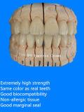지르코니아의 치과 제품은 중국 치과 실험실에서 생성했다
