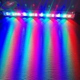 LED 벽 세탁기, LED 홍수 빛
