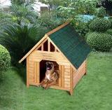 Im Freienhinterhof-hölzernes Haus für Hund