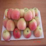 Vers Feest Apple met Oorsprong Shandong