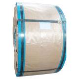 Bobina della latta (SPTE0402)