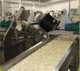 중국은 소금물에 있는 마늘을 거피했다