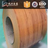 prepainted катушка холоднокатаной стали