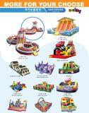 Aufblasbarer Schloss-Prahler mit kundenspezifischem Entwurf für Verkauf