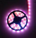 Tiras Flexibles LED RGB-5050-60(arriba)