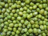 緑のMung豆
