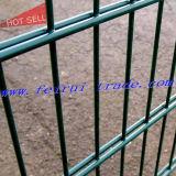 Enduit de poudre de clôtures de fil double