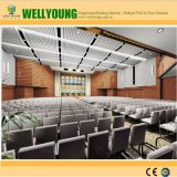 Perforated доска MGO для конференц-зала