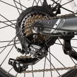 Электрический велосипед жира 20 электрический велосипед педали управления подачей топлива электрический велосипеды для взрослых