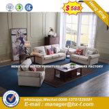 Muebles clásicos de madera sofás de tela (HX-SN8083)