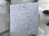 灰色の大理石の大きい平板の中国の灰色の大理石の床の大理石