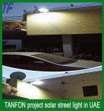 Populärer Entwurfs-Solargarten-Licht, Solar-LED-Garten-Licht 30W 50W
