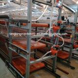 Design profissional de baixo custo do sistema de gaiola de frangos de corte