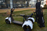 1500W Golf Scooter eléctrico con batería de litio de 3 ruedas