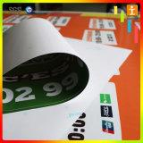 Стикер окна винила PVC цены по прейскуранту завода-изготовителя с аттестацией RoHS (TJ-024)