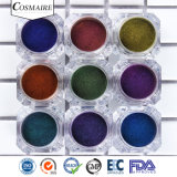 Admirable Chromashift Pigment d'Ongles fournisseur multicolore