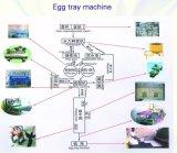 섬유 펄프 계란 쟁반, 계란 상자를 생성하는 주조 생산 라인