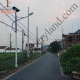 20Вт светодиод солнечной энергии на улице с 7м полюс для DZS-07-20стояночного (W)
