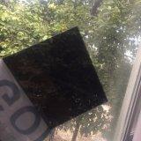 プールおよび温室の天井のためのポリカーボネートの固体シート