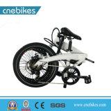 [كنبيكس] حارّ يبيع [250و] يعشّق صرة محرّك درّاجة كهربائيّة [فولدبل]