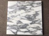 高品質の食堂の床のための自然な石造りのArabescatoの大理石のタイル