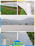 Tela não tecida da largura 100% PP Spunbond do branco 6m/7.2m para a proteção de plantas do jardim