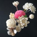 Flor popular roja de Sola del crisantemo para el difusor de lámina por hecho a mano