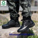 Ботинки армии военного пустыни тактические