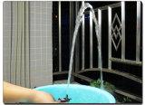 太陽Indoor PlantまたはSmall Fountain/Medical Equipmentのための12V DC Water Pump