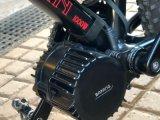 [بفنغ] [بّس02] [750و] كهربائيّة درّاجة محرّك إدارة وحدة دفع منتصفة من الصين