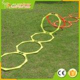 Velocidad y ayuda a la formación de enseñanza hexagonales al por mayor del baloncesto del balompié del fútbol del tenis de los anillos del entrenamiento de la agilidad con el bolso que lleva